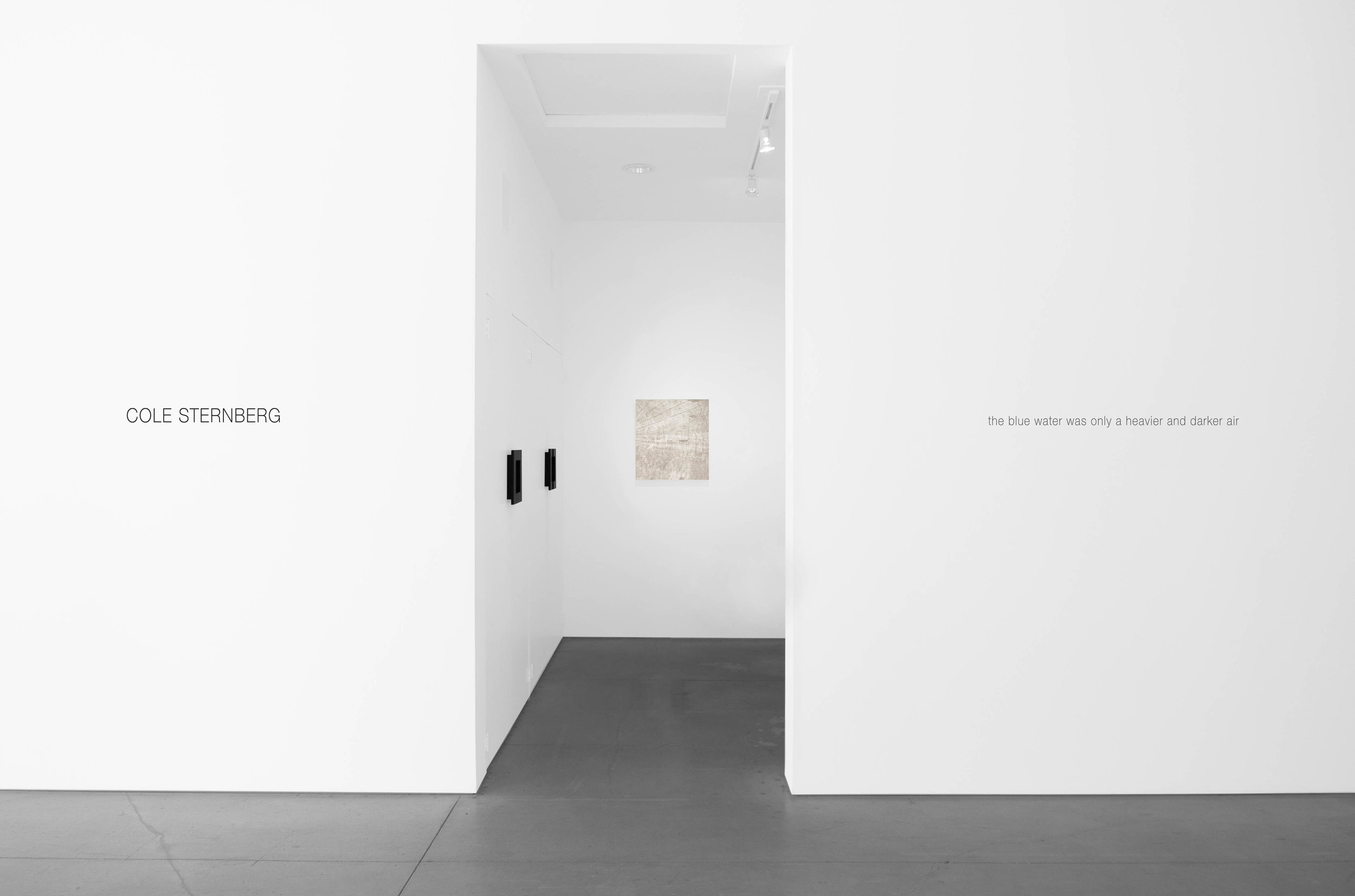 Cole Sternberg Solo Exhibition 2019_Peter Blake Gallery_Installation View_11.jpg