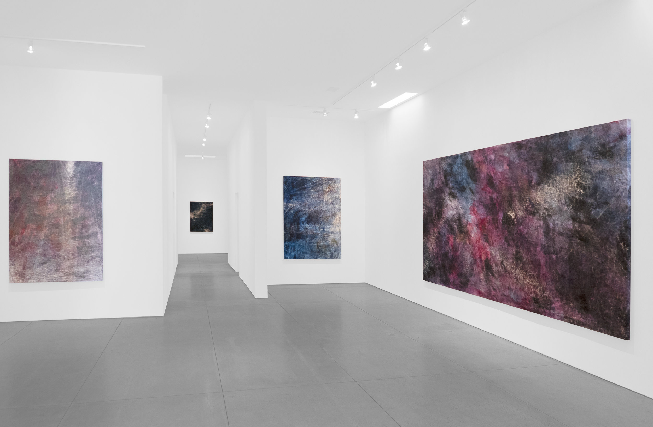 Cole Sternberg Solo Exhibition 2019_Peter Blake Gallery_Installation View_12.jpg