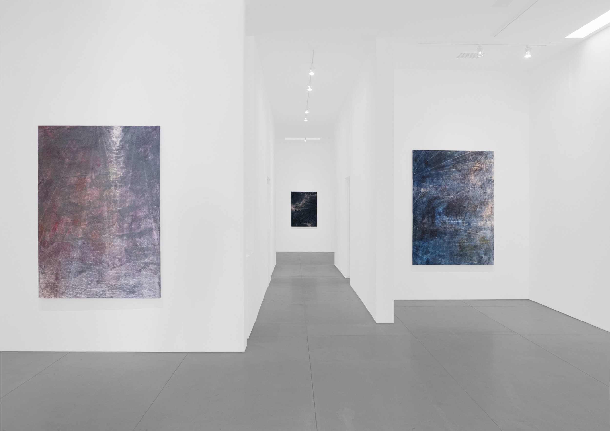 Cole Sternberg Solo Exhibition 2019_Peter Blake Gallery_Installation View_16.jpg