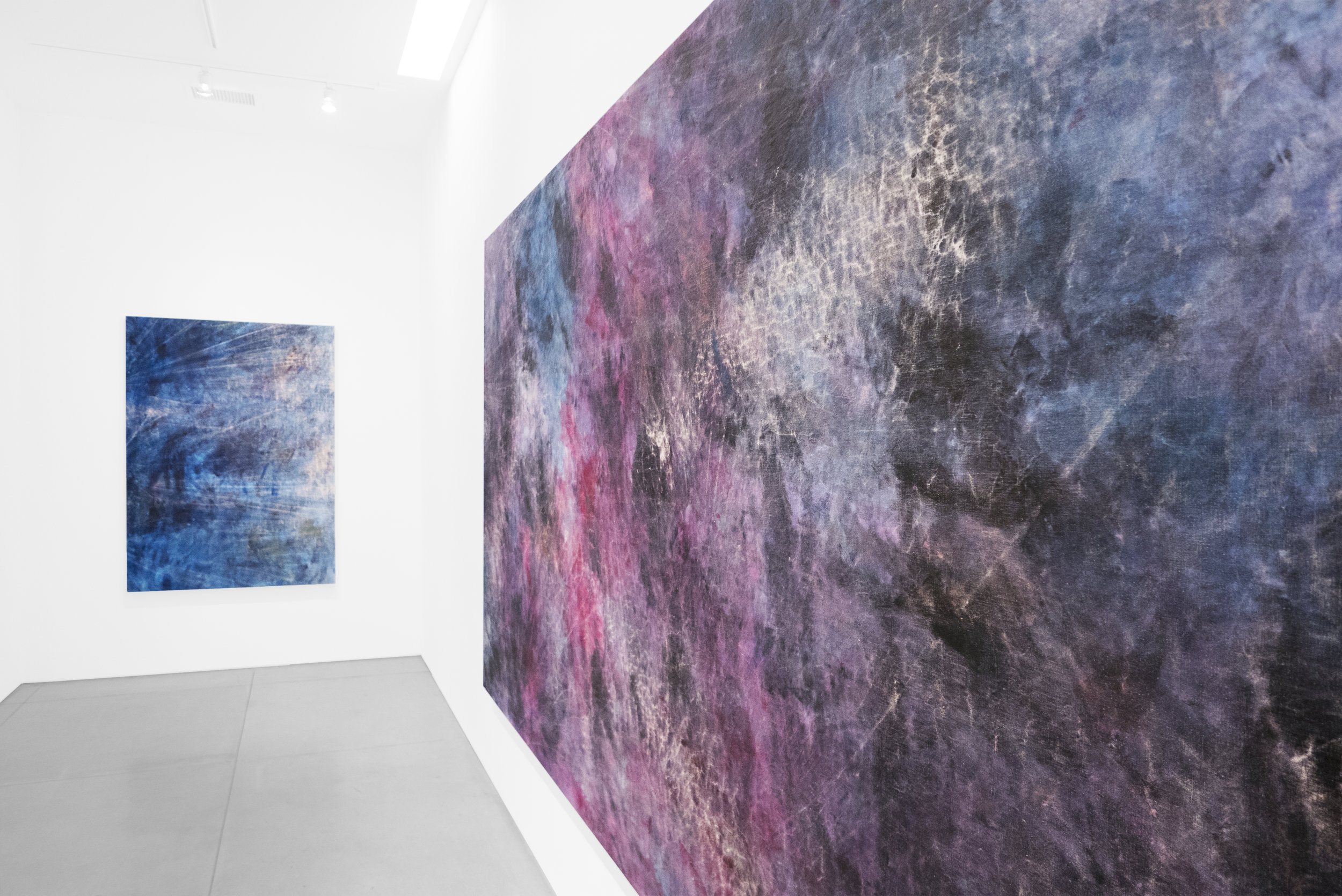 Cole Sternberg Solo Exhibition 2019_Peter Blake Gallery_Installation View_20.jpg