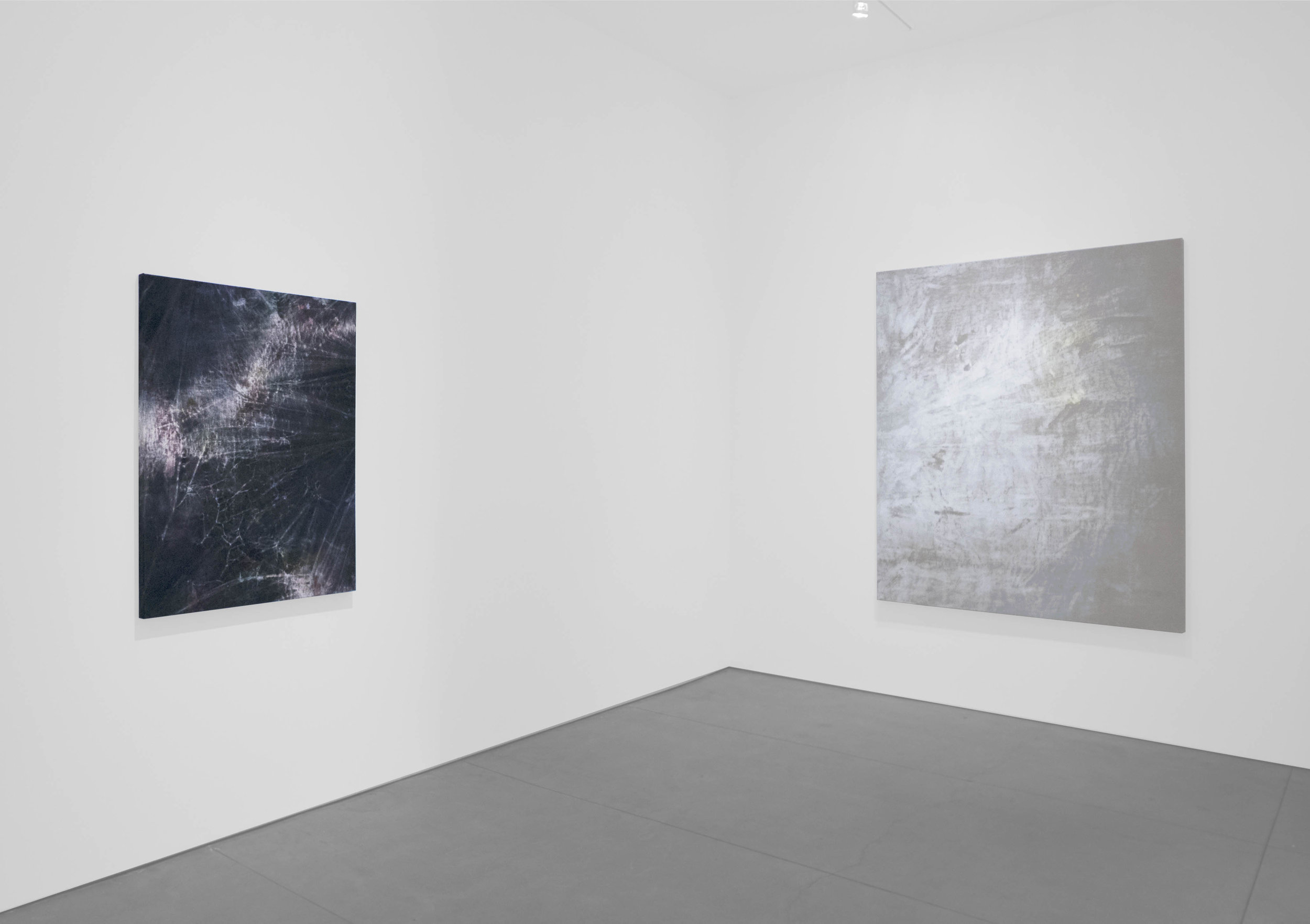 Cole Sternberg Solo Exhibition 2019_Peter Blake Gallery_Installation View_22.jpg