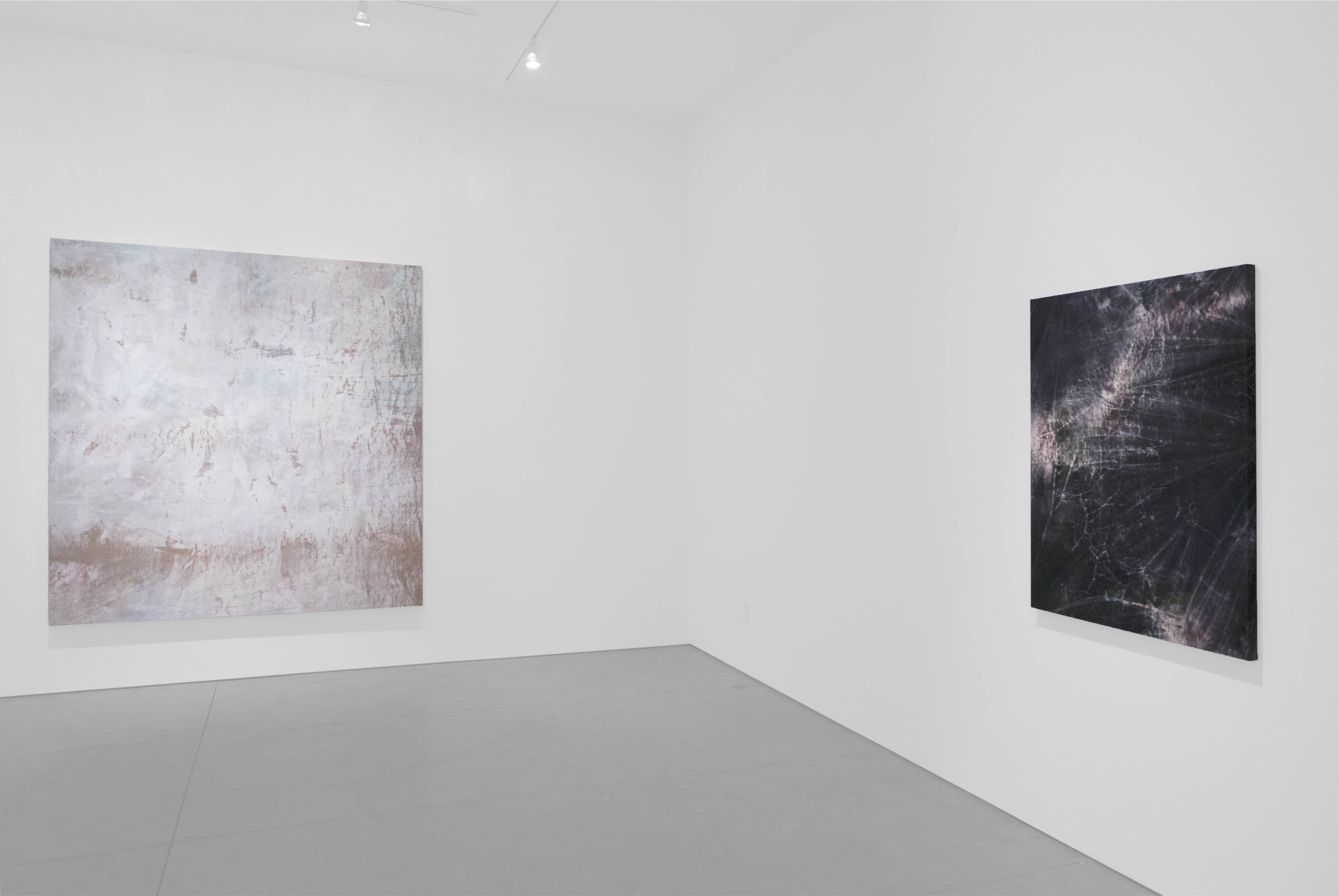 Cole Sternberg Solo Exhibition 2019_Peter Blake Gallery_Installation View_23.jpg