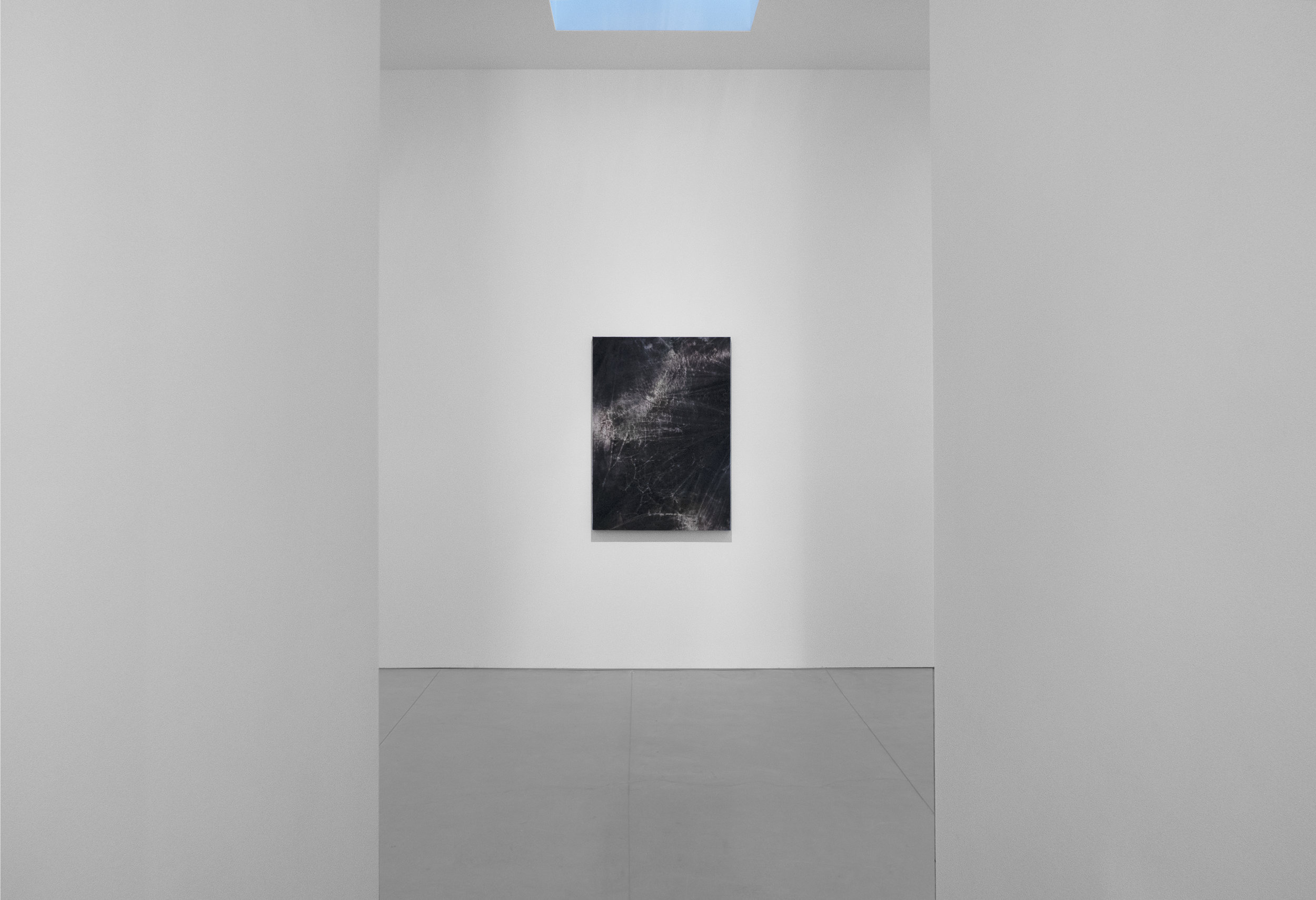 Cole Sternberg Solo Exhibition 2019_Peter Blake Gallery_Installation View_21.jpg
