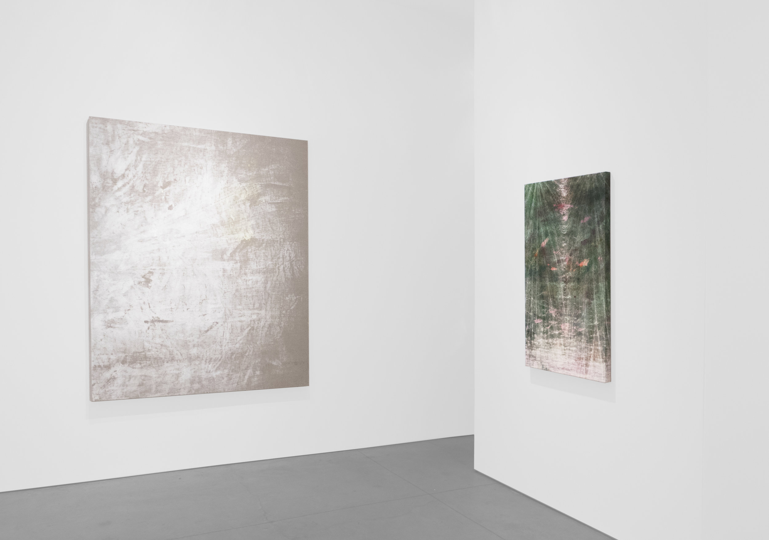 Cole Sternberg Solo Exhibition 2019_Peter Blake Gallery_Installation View_25.jpg