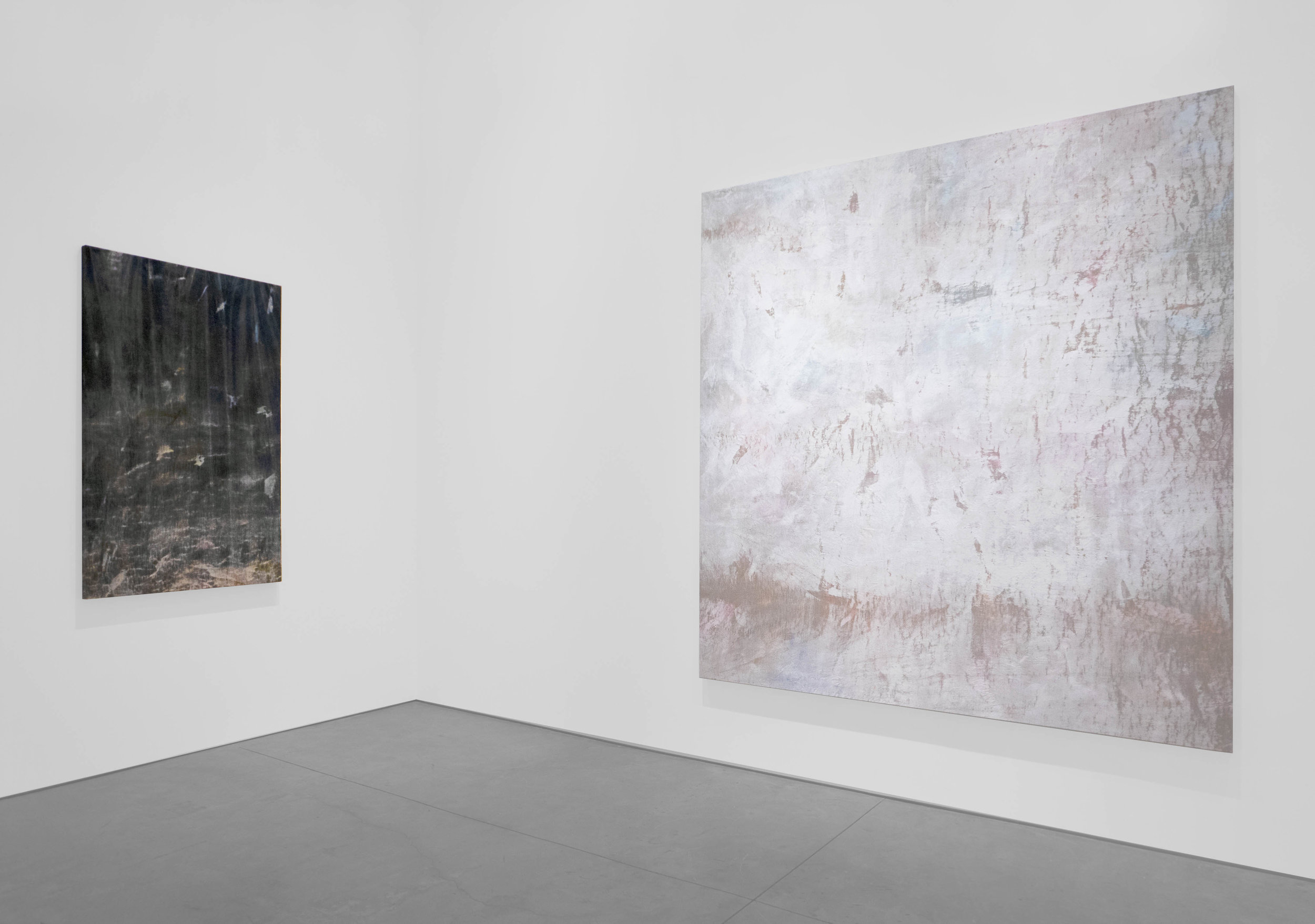 Cole Sternberg Solo Exhibition 2019_Peter Blake Gallery_Installation View_26.jpg