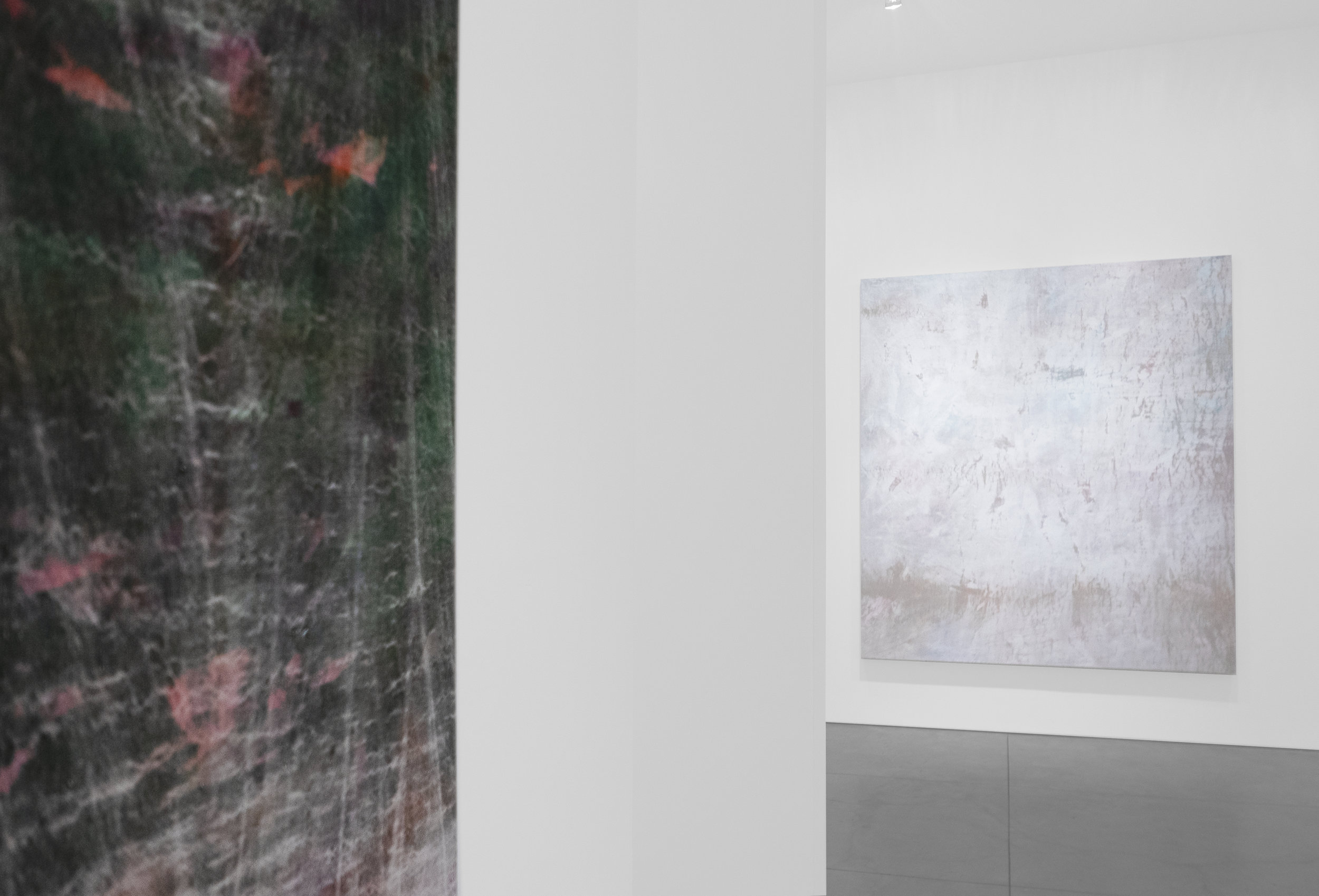Cole Sternberg Solo Exhibition 2019_Peter Blake Gallery_Installation View_27.jpg