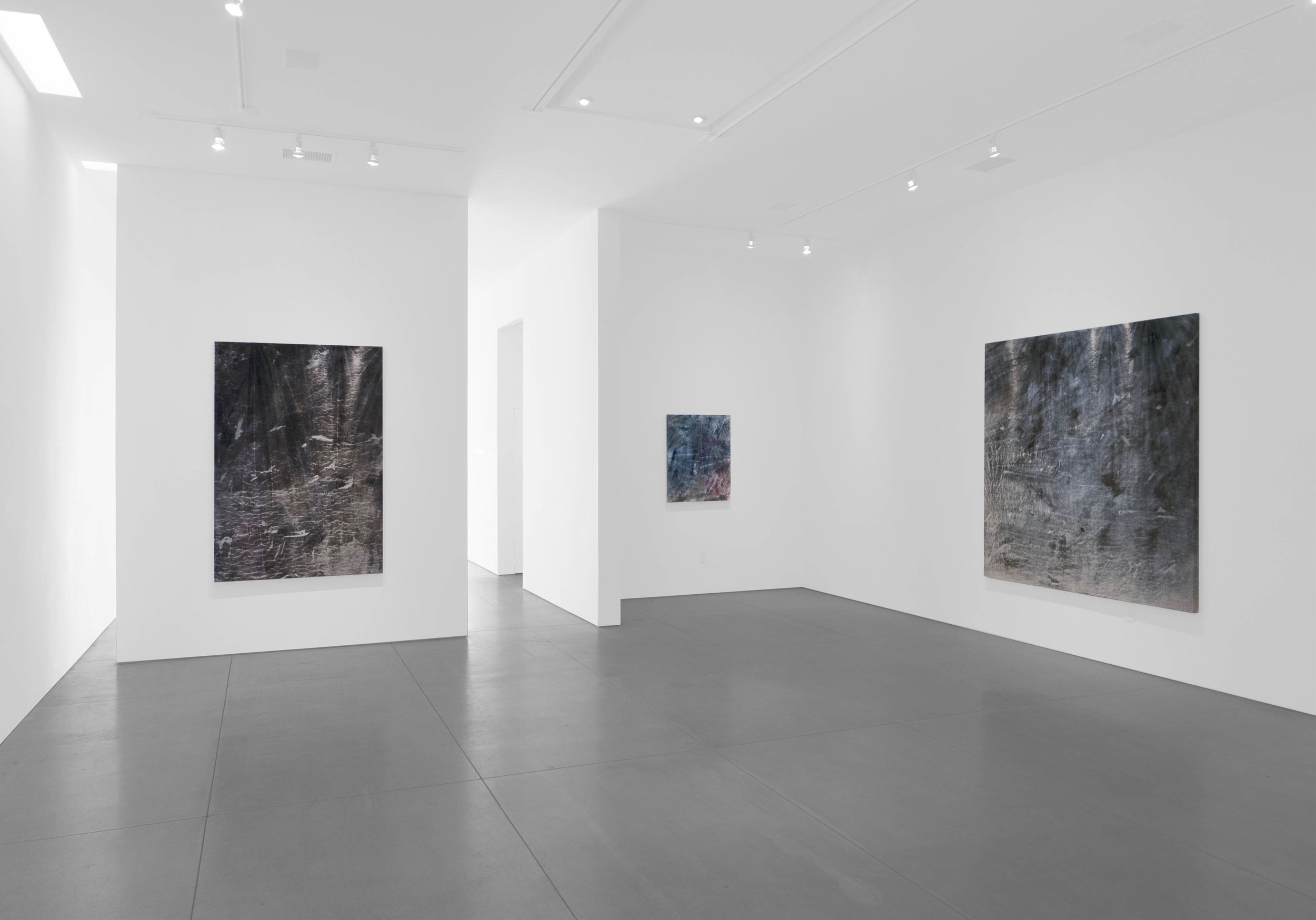Cole Sternberg Solo Exhibition 2019_Peter Blake Gallery_Installation View_18.jpg