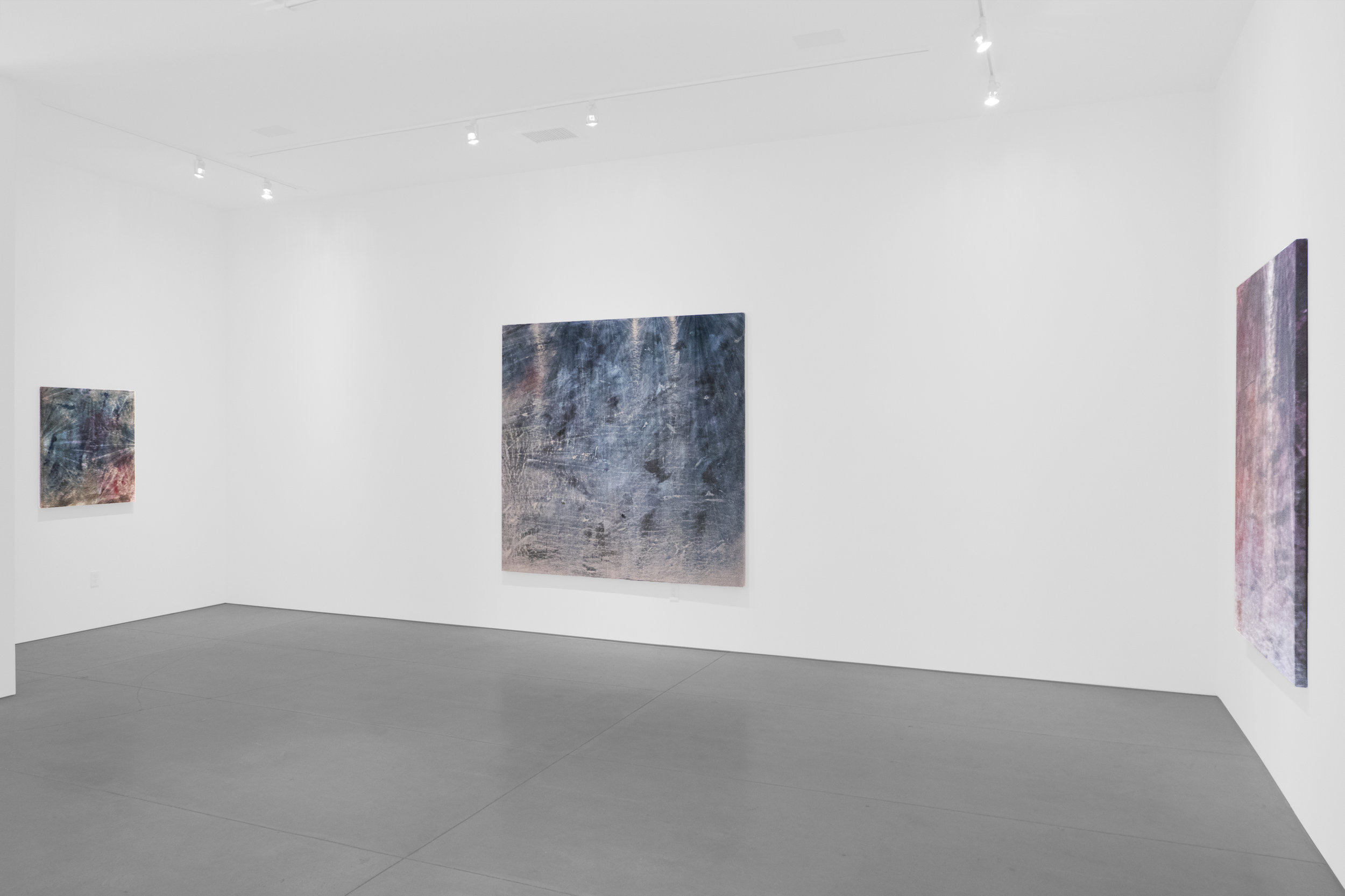 Cole Sternberg Solo Exhibition 2019_Peter Blake Gallery_Installation View_7.jpg