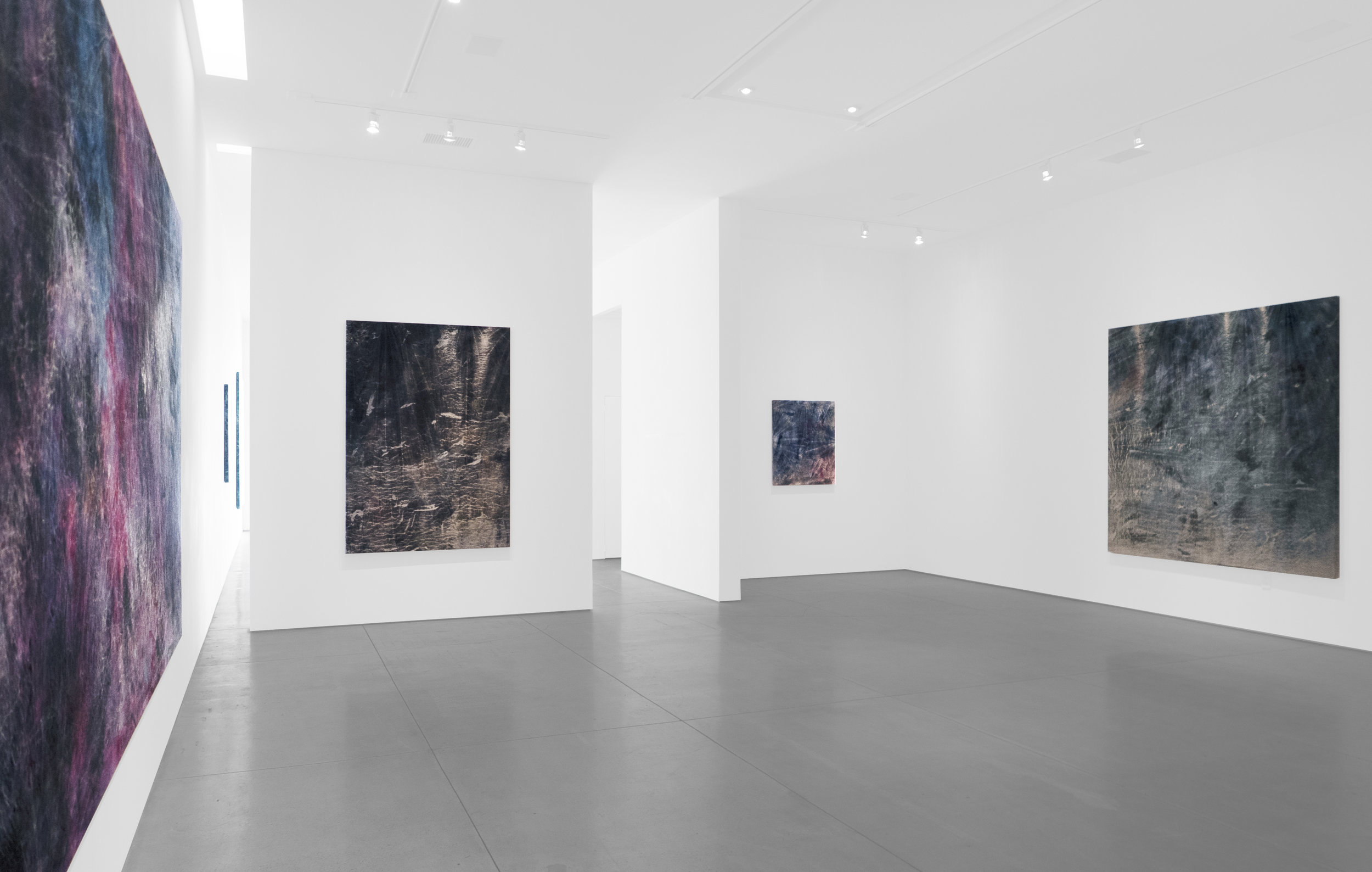 Cole Sternberg Solo Exhibition 2019_Peter Blake Gallery_Installation View_8.jpg