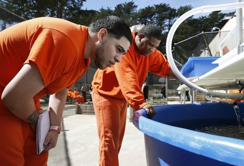 San Francisco County Jail - Urban Ag: Pathway to Employment