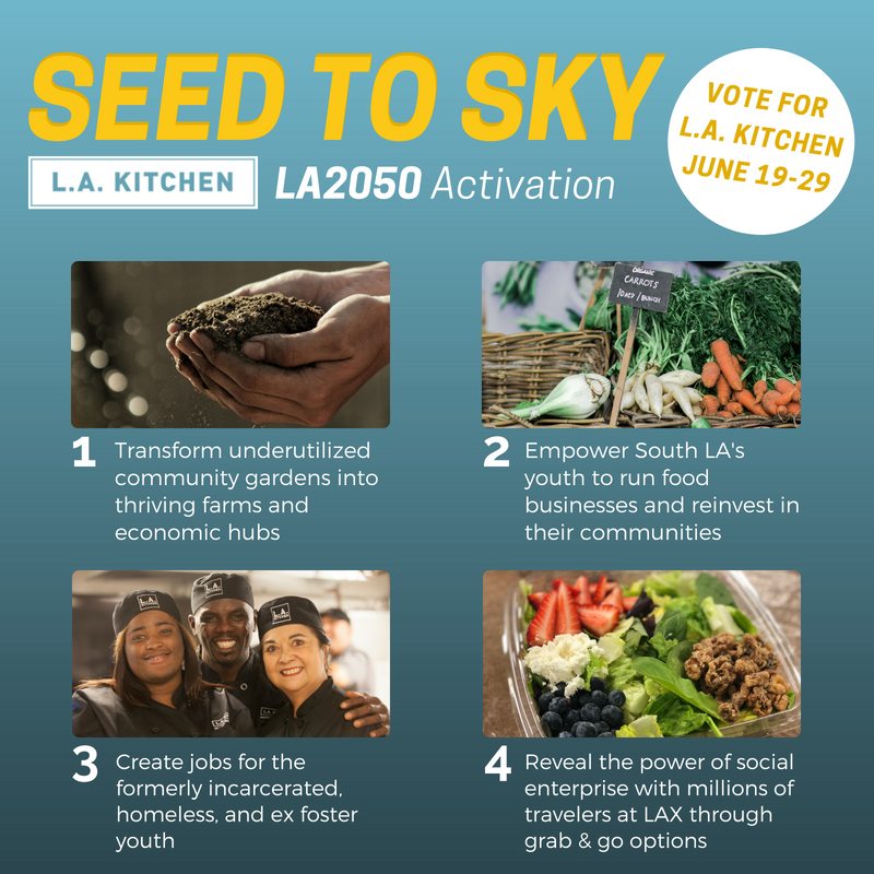 2. Instagram - Seed to Sky.png