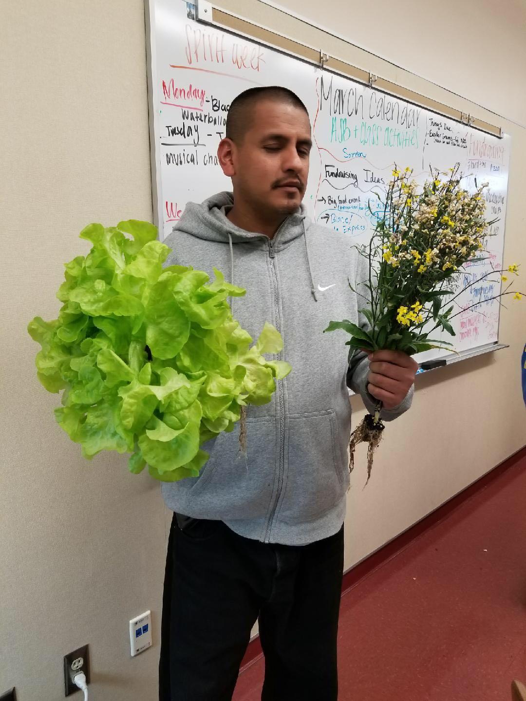 Harvest held by the children's teacher