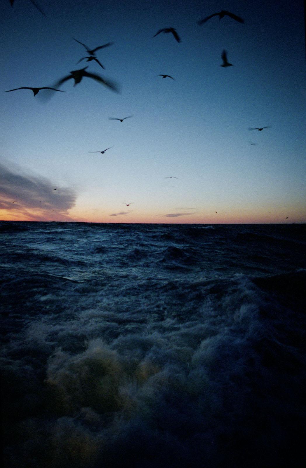 trawlermen_23.jpg