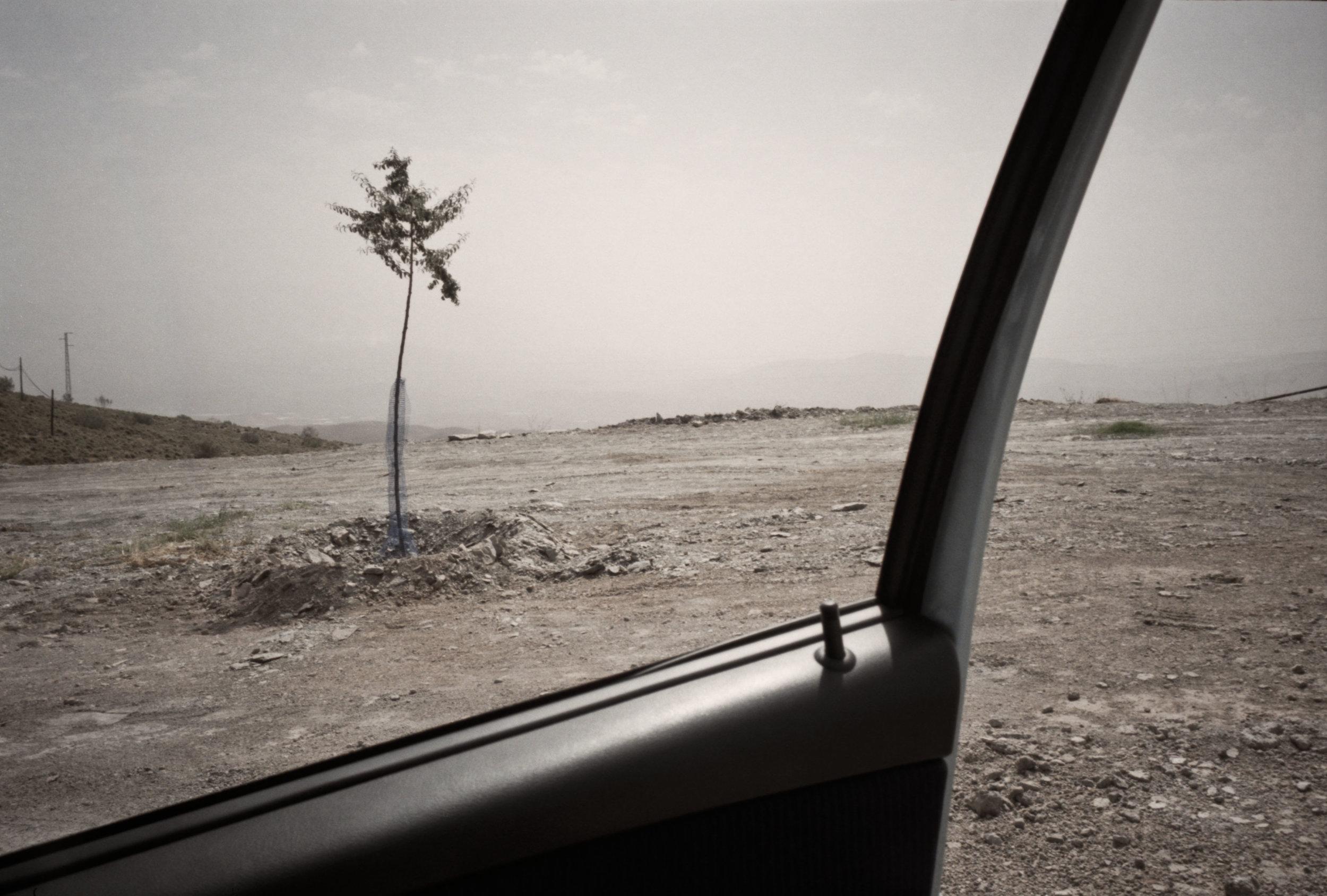 car door 02-2.jpg