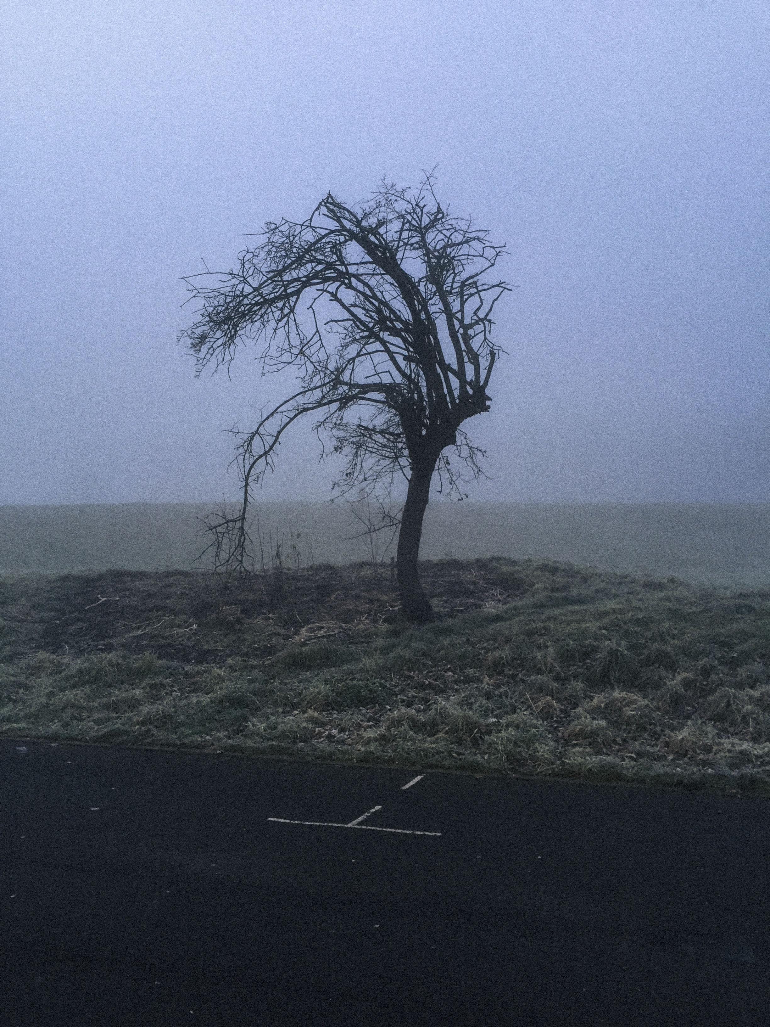 Snapseed (9).jpg
