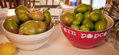 Seriously, what do you do with this many green tomatoes?