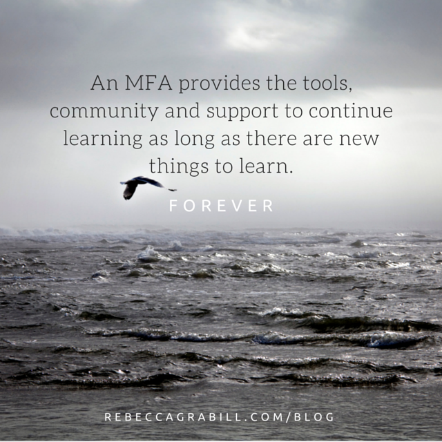 benefits mfa soaring seagull