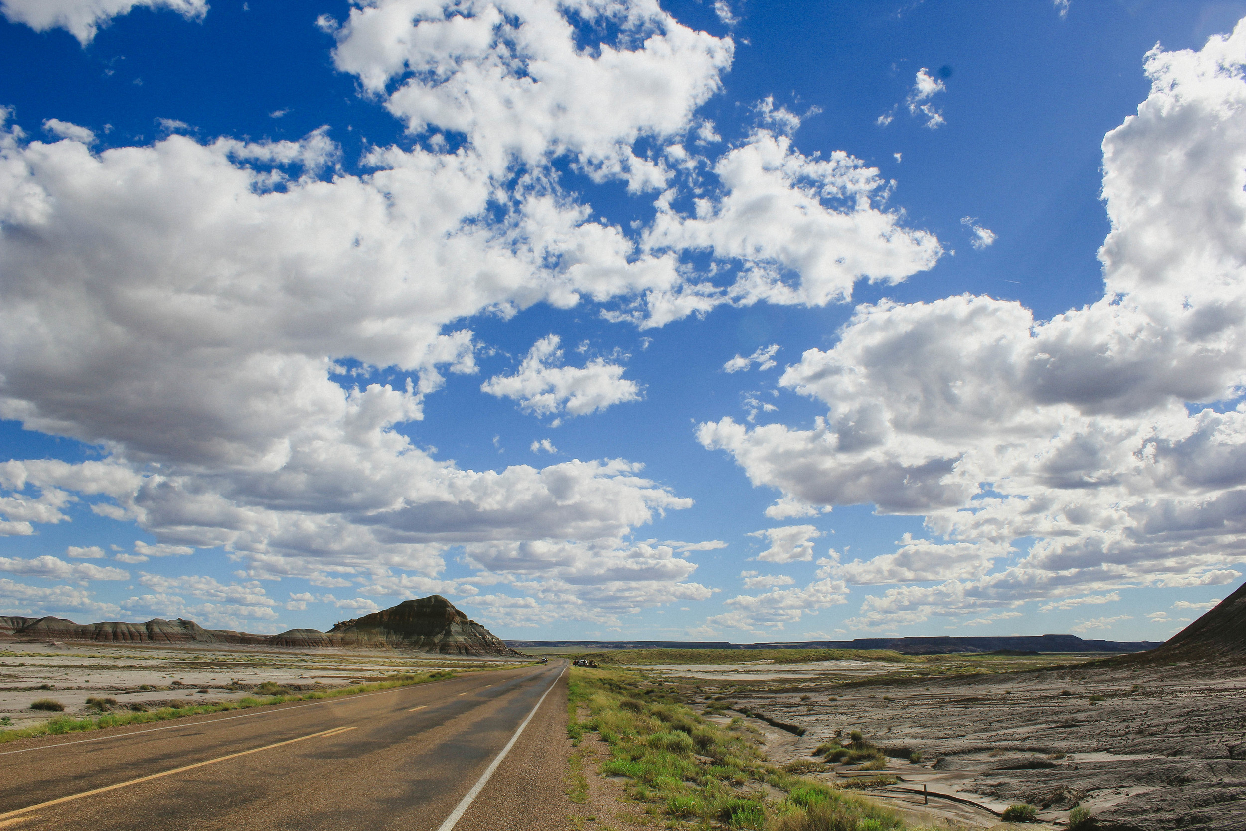 The road through Petrified Forest National Park