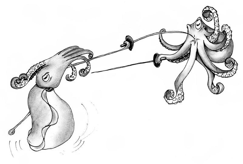 cuttlefish vs octopus