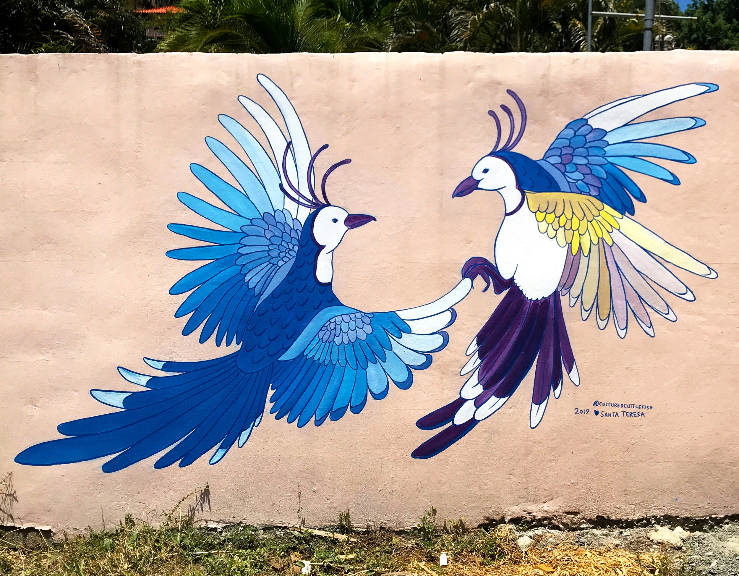 """Piapia Azuls Enamorados"" at Casa Victorio, Santa Teresa, Costa Rica, 2019."