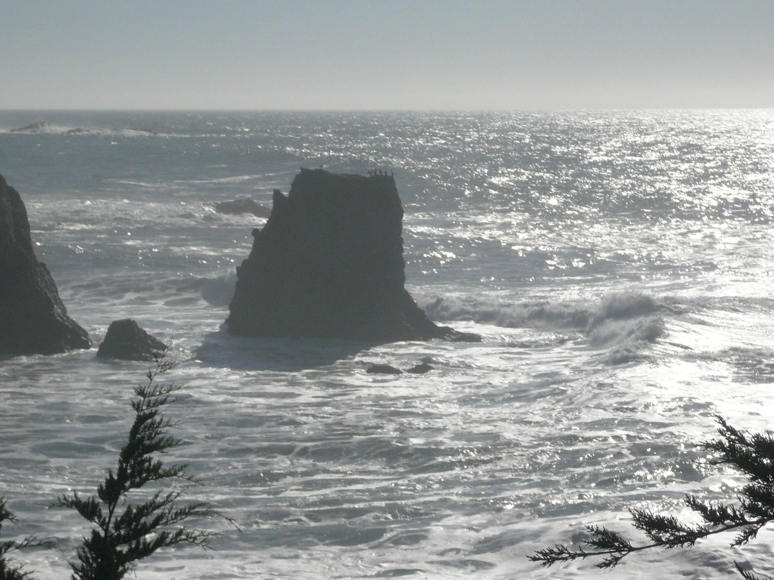 A cove: Pacific Ocean