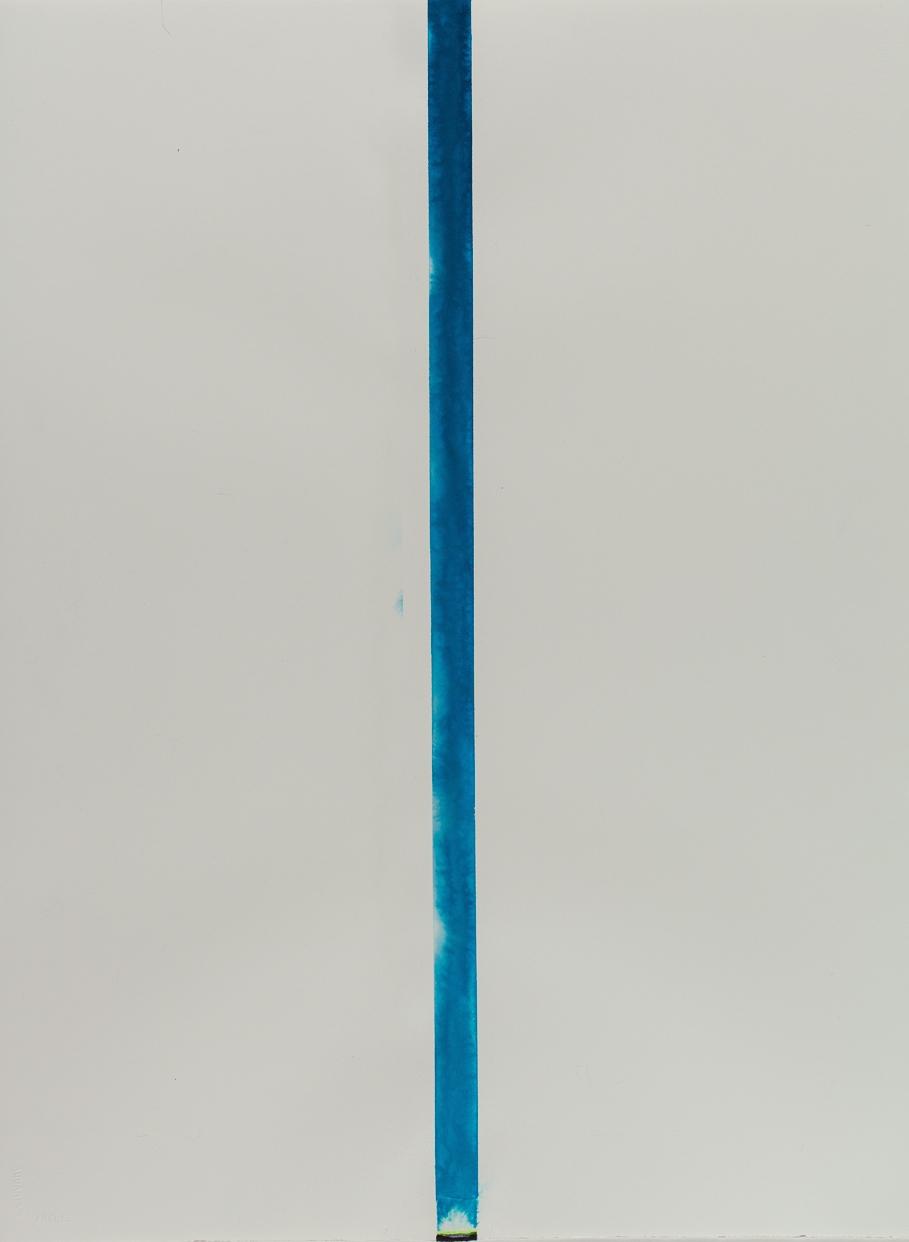 """Exosphere, Atmosphere, Sea  Inks on watercolor paper 30""""H x 22""""W 2013"""