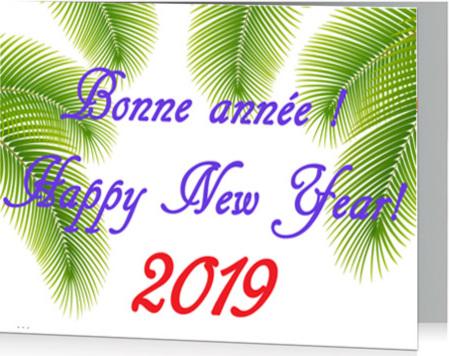 efam-bonne-annee-happy-new-year-2019.jpg