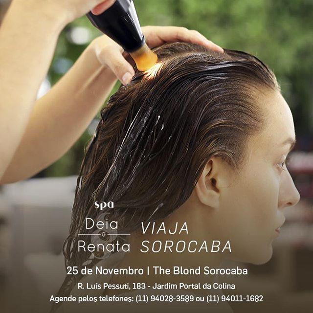 Sorocaba, estamos chegando!  Dia 25 de Novembro estaremos no @theblondsorocaba com os nossos tratamentos exclusivos e toda linha de produtos! Agende seu horário: (11) 94028-3589 ou 94011-1682, esperamos vocês. . #sorocaba #spadeiaerenataviaja #theblondsorocaba #cabelo #saudecapilar #haireducation #beleza #beauty #viagem