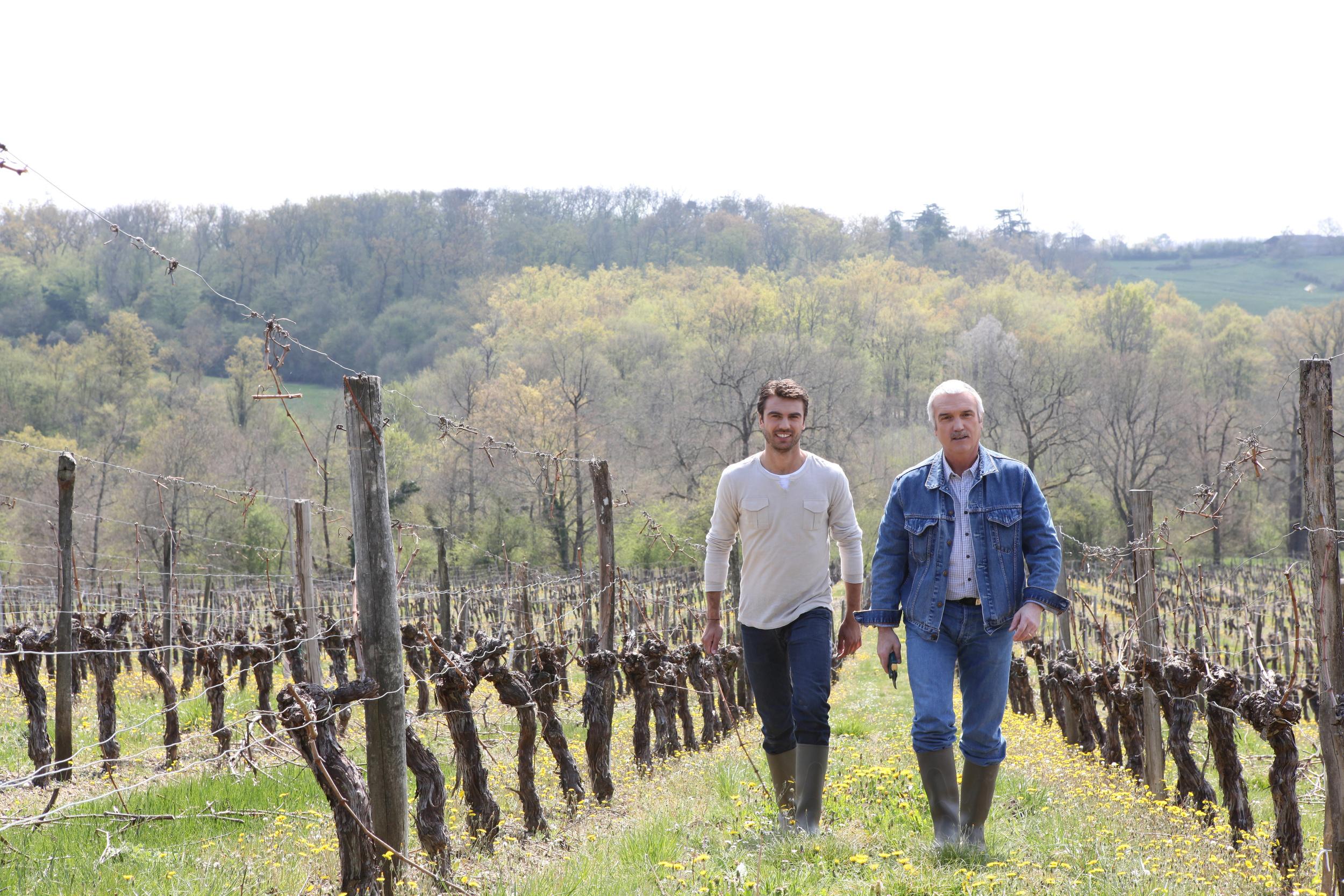 vineyard-manager.jpeg