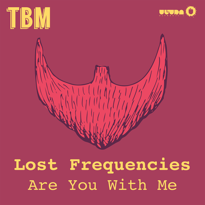 Are You With Me - Lost Frequencies