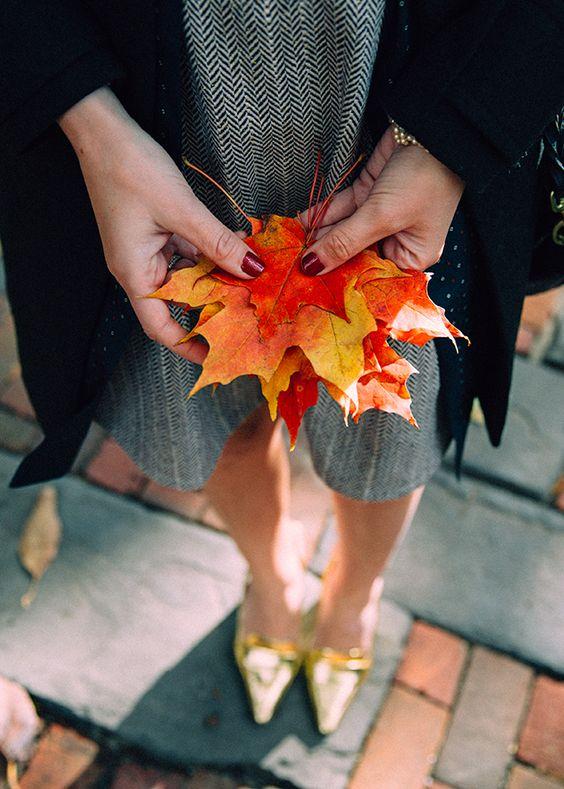 fall_love
