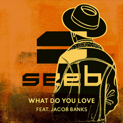 What_Do_You_Love_Seeb