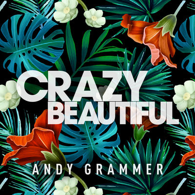 Crazy Beautiful - Andy Grammar