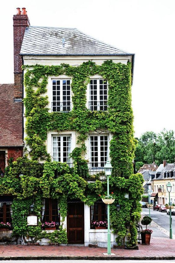 ivy in normandy