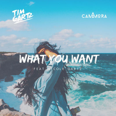 What You Want - Tim Gartz