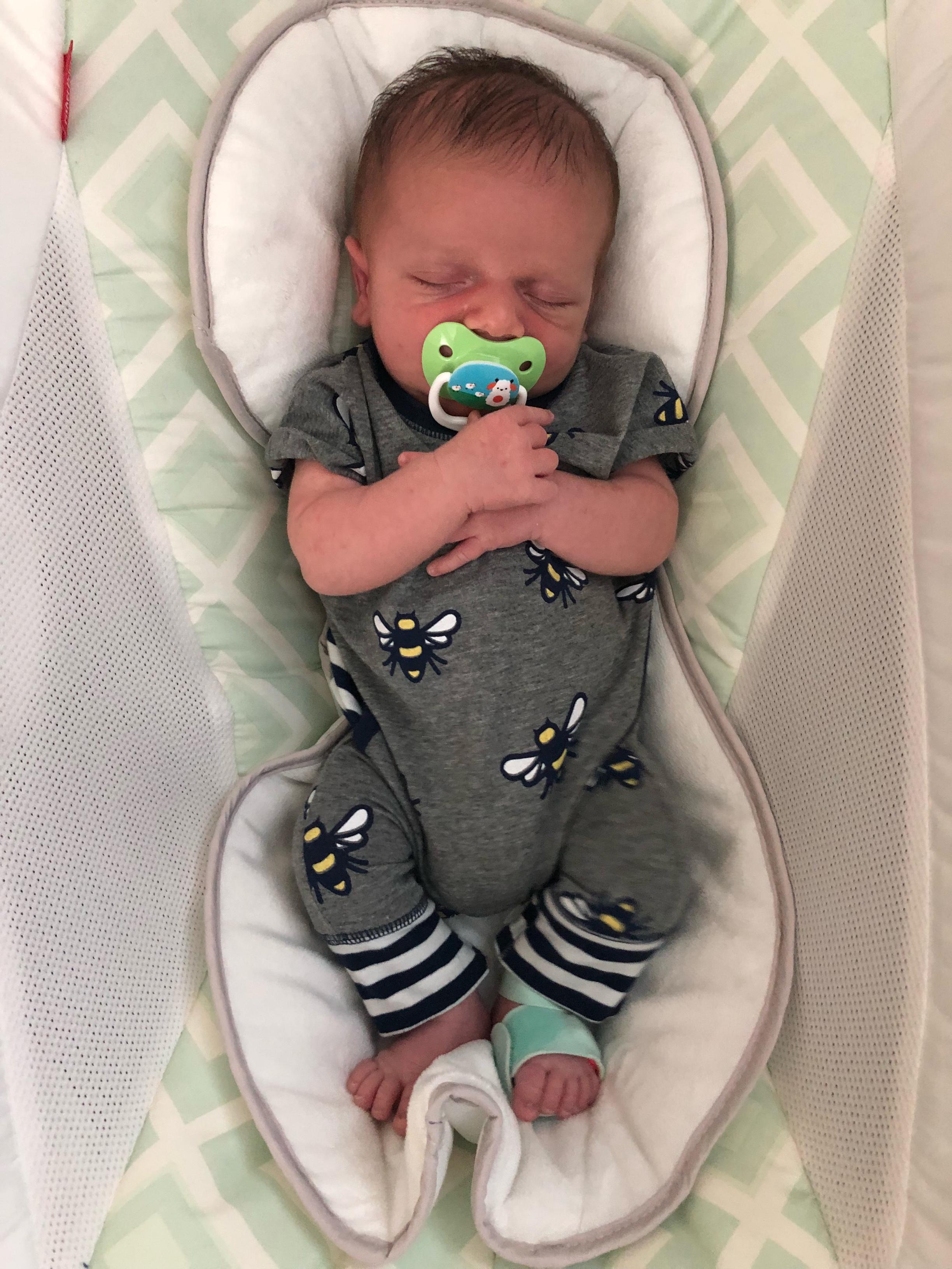 Parx - 4 weeks old