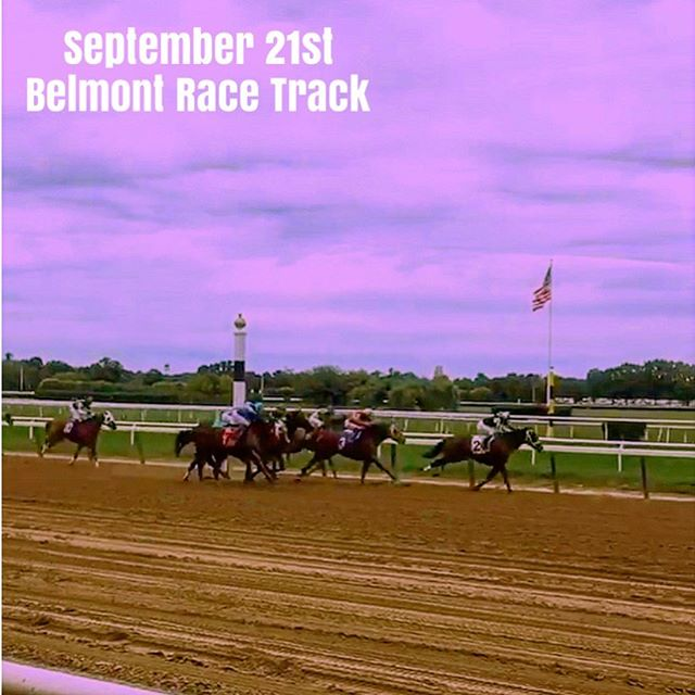 You bet your horses 🐎, it's that time of year again! Giddy up and GET YOUR TICKETS NOW for the MMF's annual Purple Tie Stakes! Link in bio!
