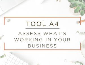 Free Business Assessment Tool 4.jpg