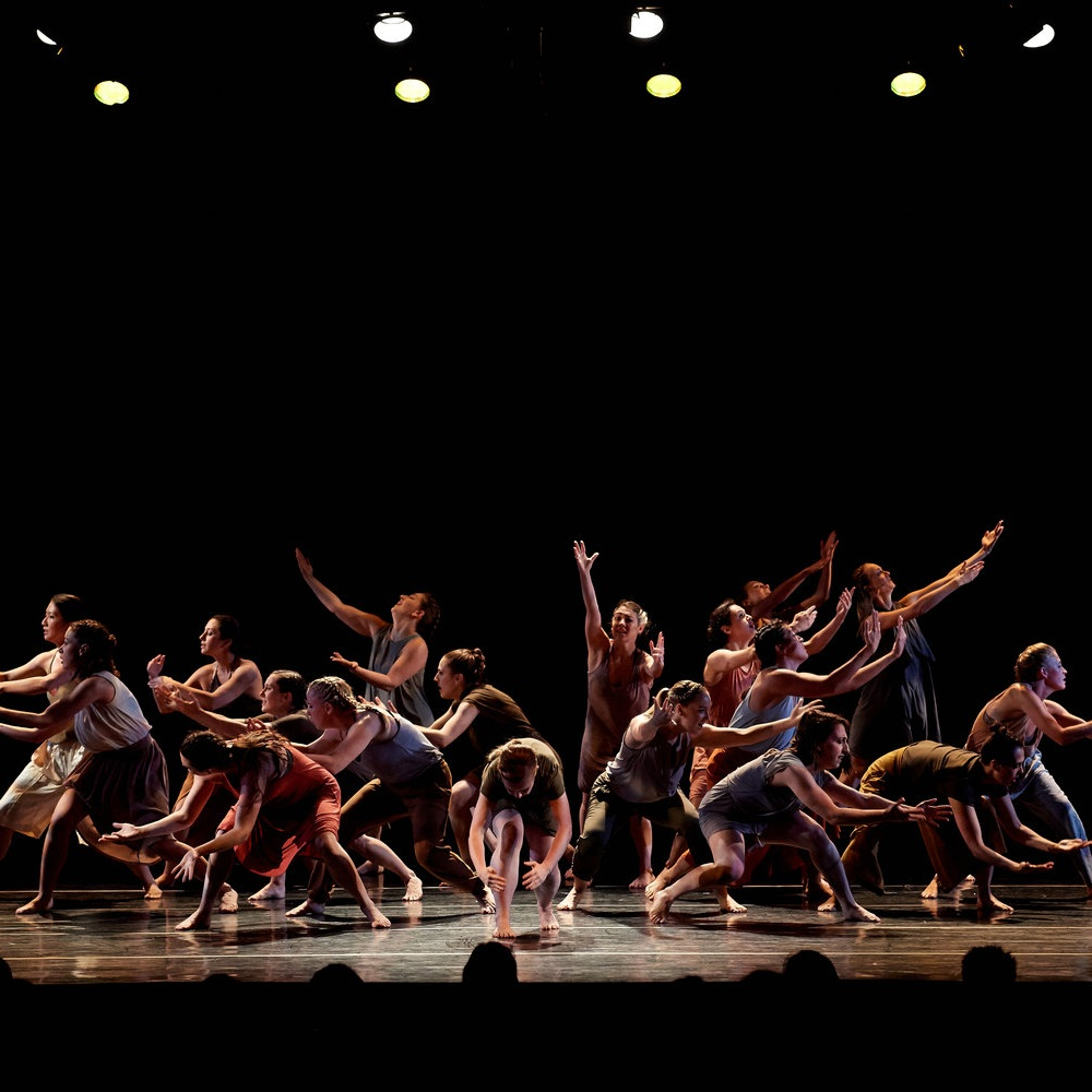 Young Choreographers Festival, 2016-17