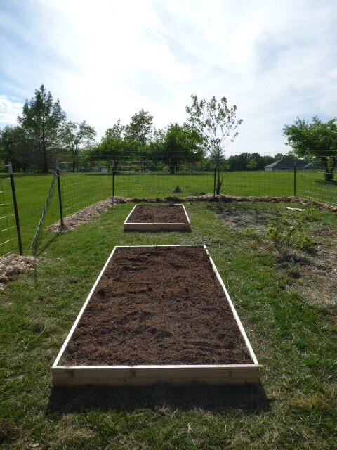 Newly filled SFG beds. Ready for strawberry plants