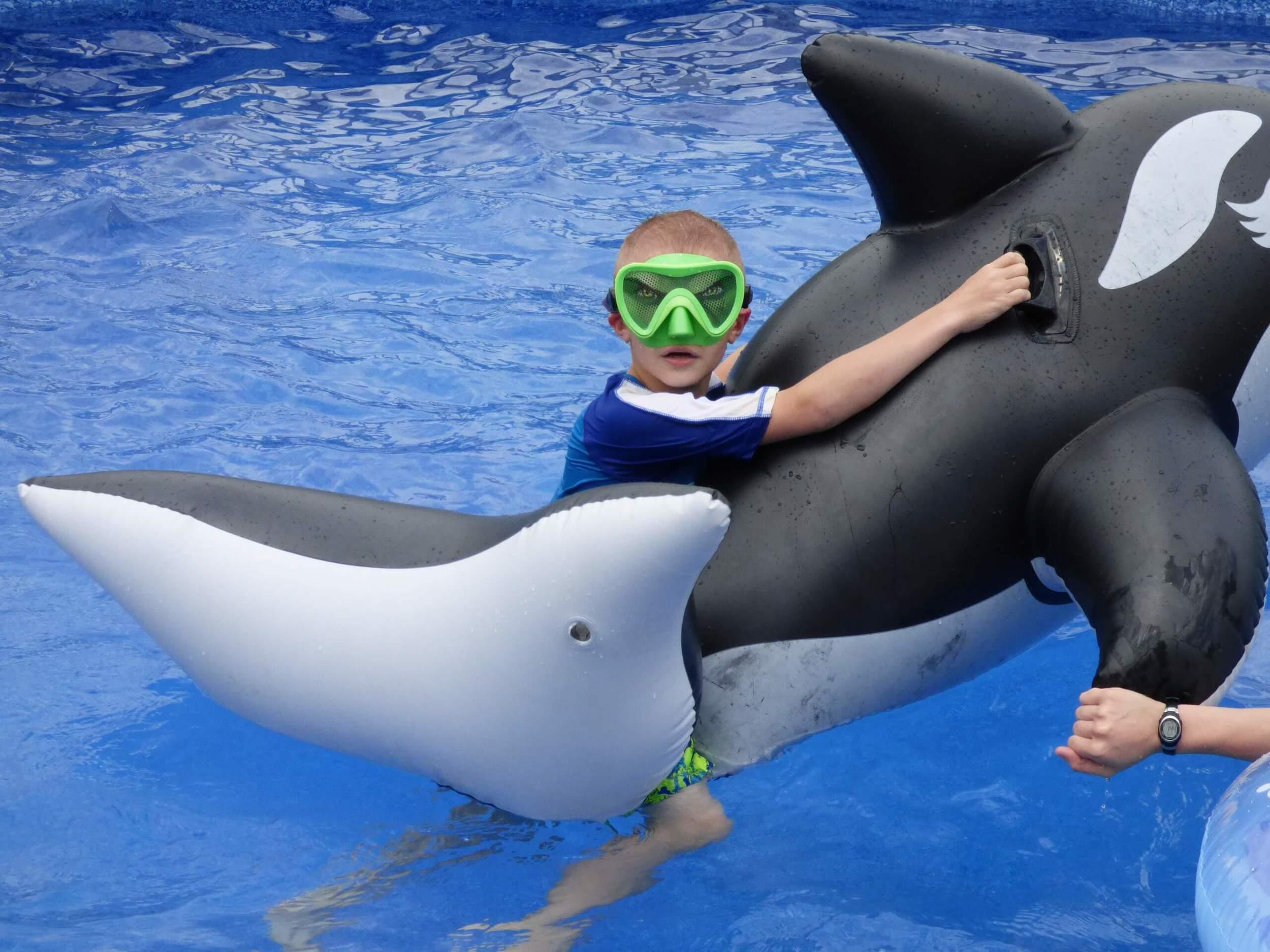summer fun in the pool