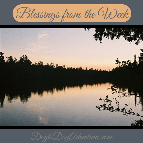 Blessings from the Week - DaytoDayAdventures.com