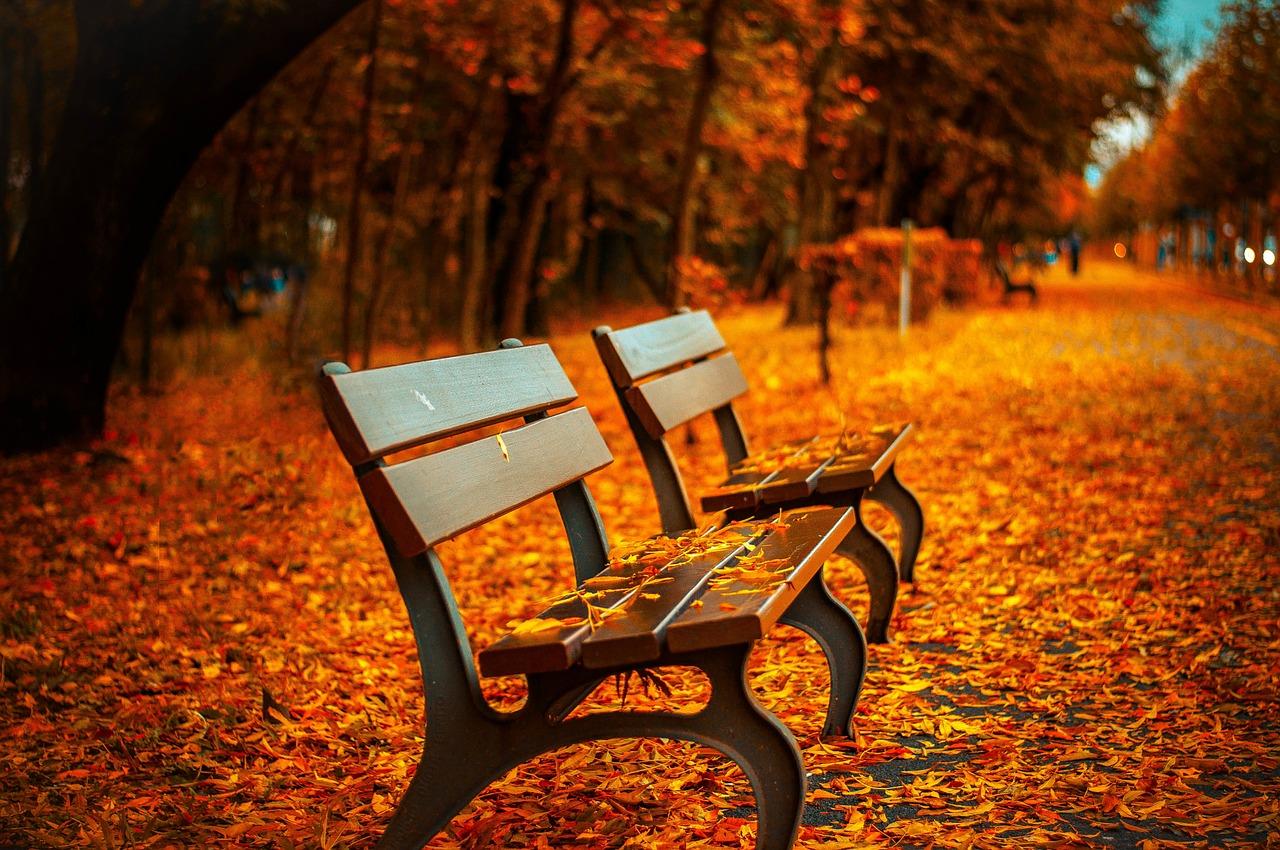 10 ways deal with Autumn Anxiety - DaytoDayAdventures.com