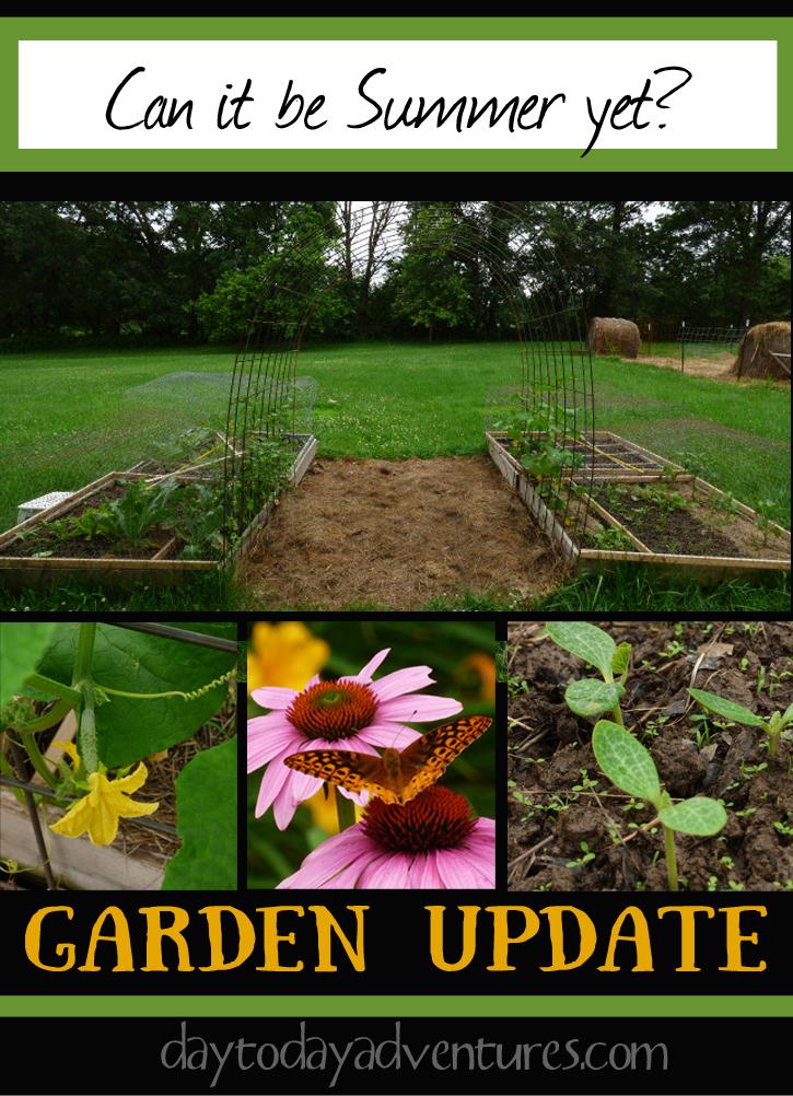 Summer Yet? Garden Update - DaytoDayAdventures.com