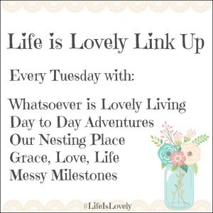Share what is lovely in your life! - Life is Lovely Linkup - DaytoDayAdventures.com