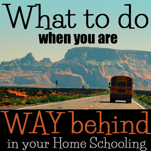 Sometimes your school year doesn't go as planned.  What do you do when you are WAY behind? - DaytoDayAdventures.com