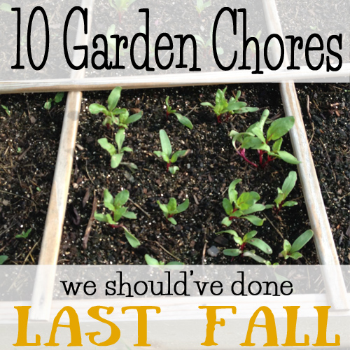 We didn't get all our chores done last fall so we have quite the list this year! - DaytoDayAdventures.com