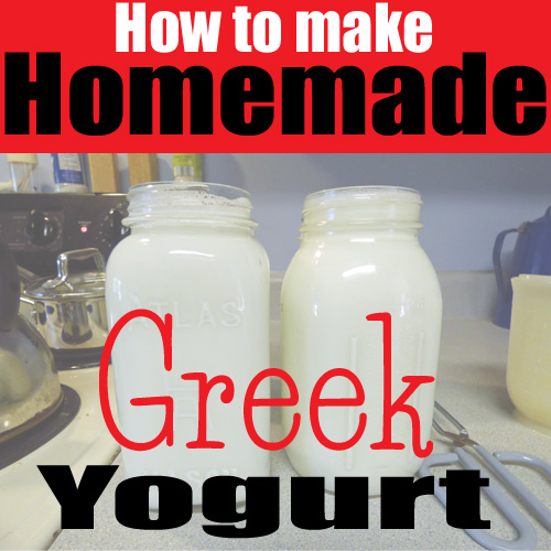 Greek Yogurt copy.jpg