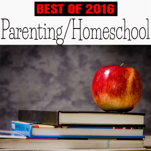 Parenting and Homeschooling:  Best of Day to Day Adventures 2016