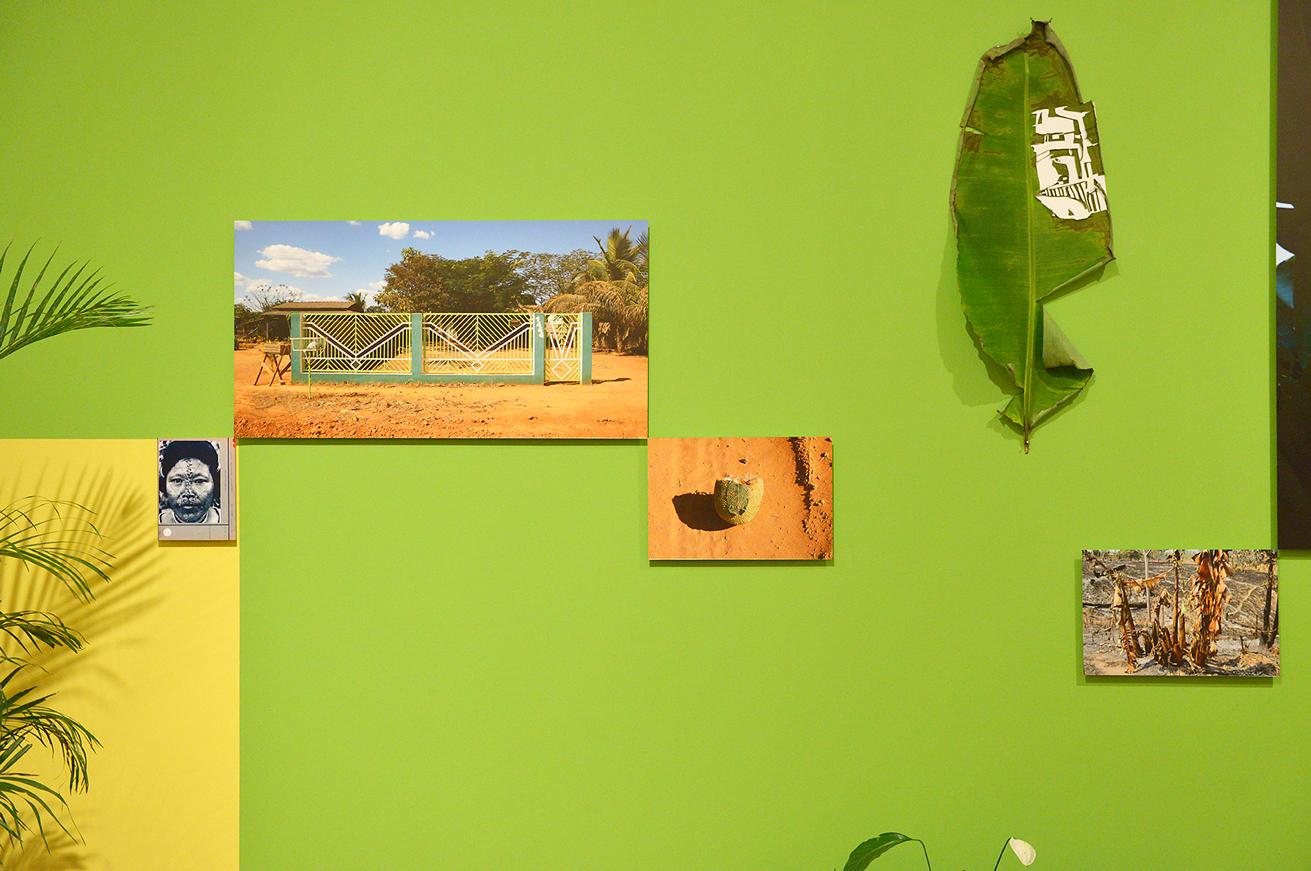 green-wall-1444-leaves-web.jpg